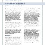 Government 457(b) Primer