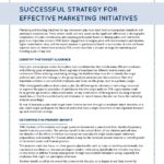 Successful Strategy for Effective Marketing Initiatives